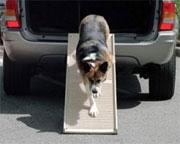 hondenloopplank-voor.jpg