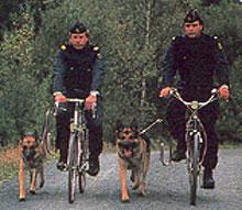 politie-springer.jpg