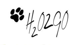 h2o2go