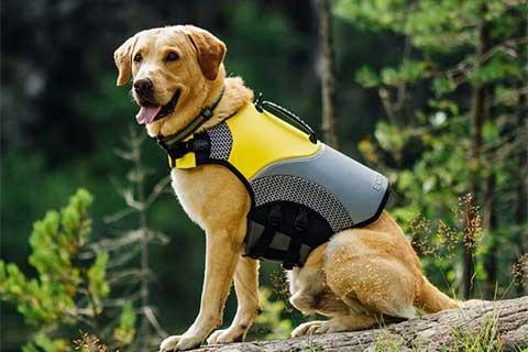 Hondenzwemvest EQDOG-PRO life vest
