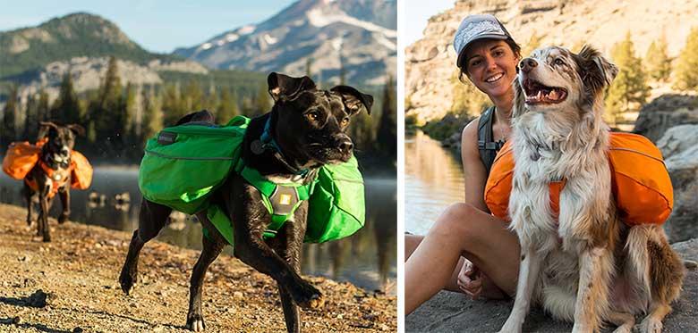 Hondenrugzak Approach Pack Ruffwear