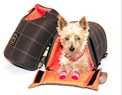 Pet-Ego-hondendraagtas-LenisPack-pethouse