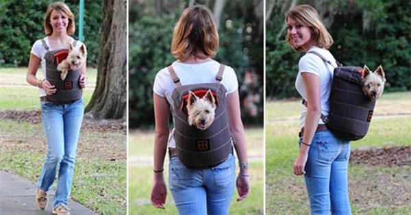 honden draagtas Lenis pack