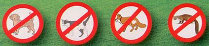 verjaagt katten konijnen honden steenmarters en vossen