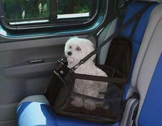 honden autostoeltje